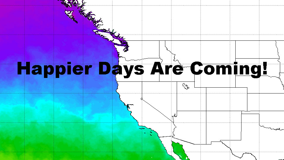 North Pacific Ocean Cools