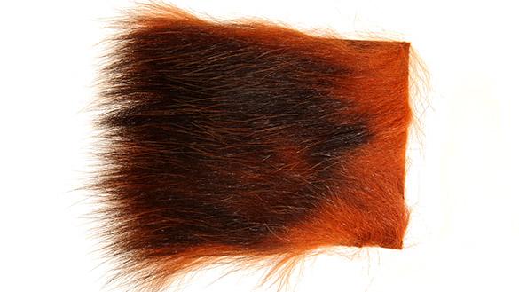 Fiery Brown