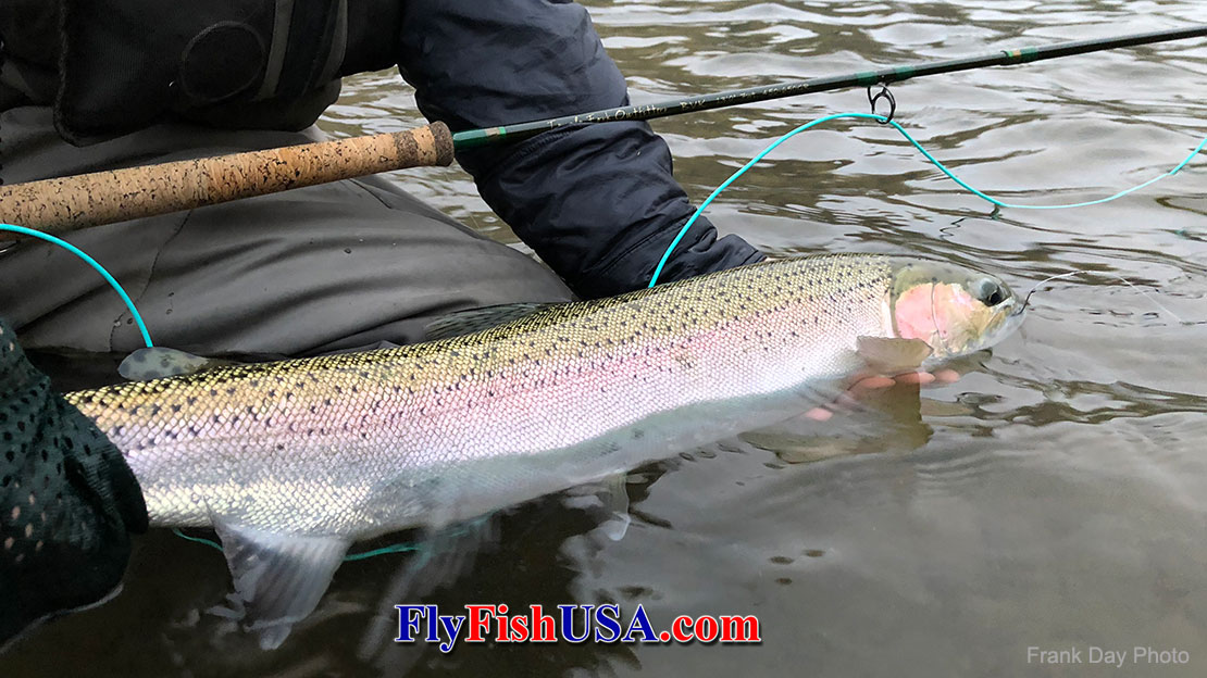 The 2018 Fly Fishing Insider Newsletter Article Writing