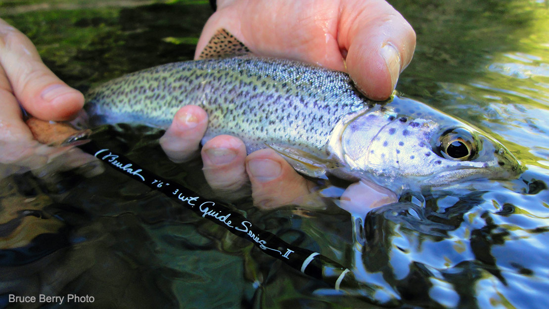 A fine coastal cutthroat trout caught with a Beulah Guide Series II rod.