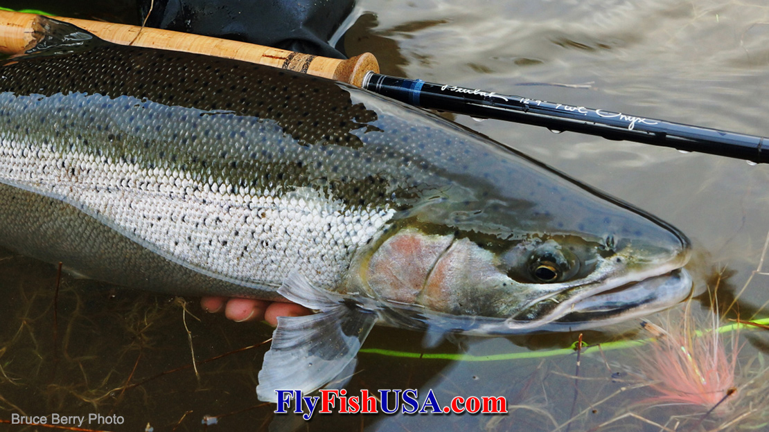 Beulah Onyx 7129 Spey Rod,  one of the most popular steelhead rods ever.