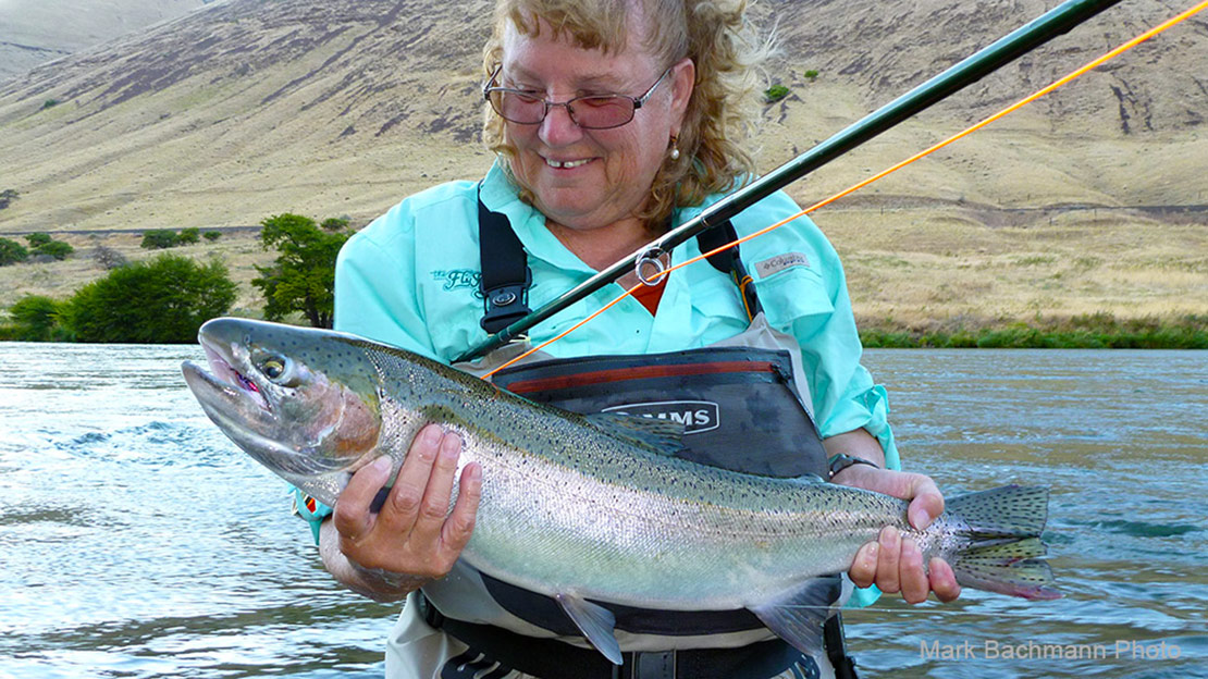 Fly du Jour:  Considered by many experienced anglers to be the very best Deschutes River summer steelhead fly!