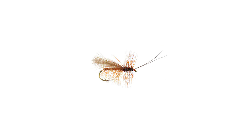 Cul De Canard Salmon Fly Adult Cul De Canard Salmon Fly Adult