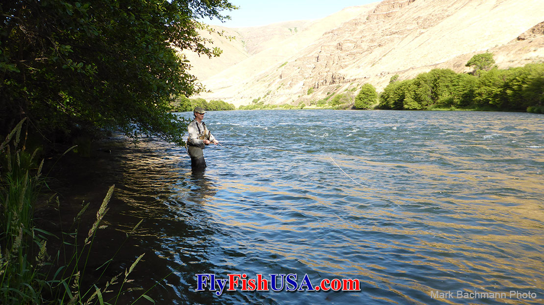 Fly angler Michael Marx tests a Sage X fly rod on Oregon's Deschutes River.