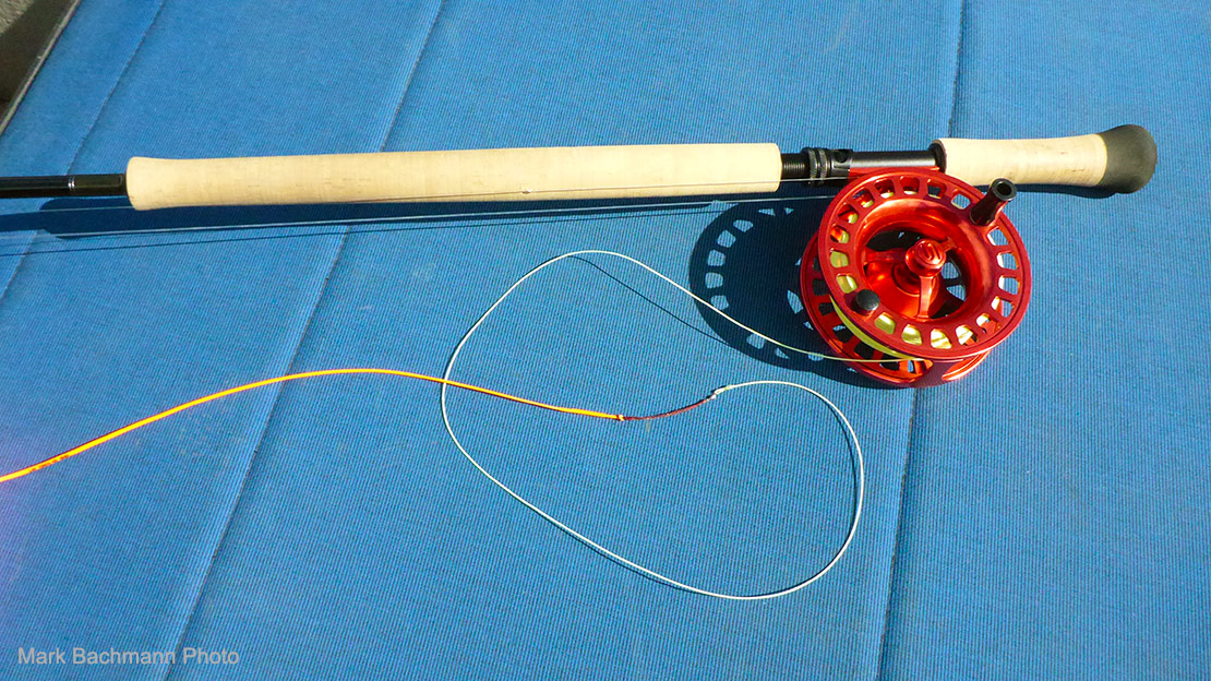 A picture of a modern Spey rod/reel setup with a shooting head fly line installed.