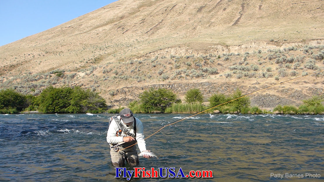 Mark Bachmann with a trout he caught while Euro nymphing the big water on Oregon's Deschutes River.