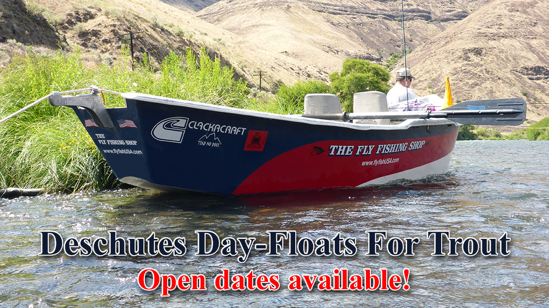 Deschutes trout day trips