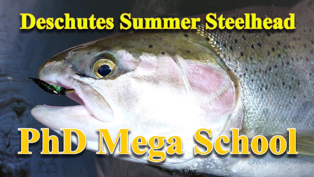 Deschutes Summer Steelhead PhD Mega School