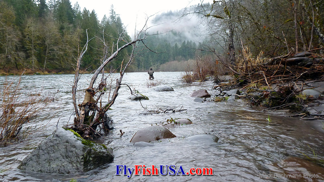 Angnler fly fishing in Oregon's oldest Wild and Scenic river section on the Sandy River.
