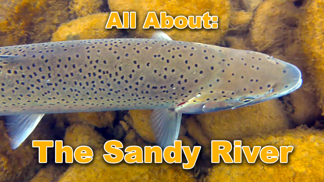 The Sandy River and its Tributaries