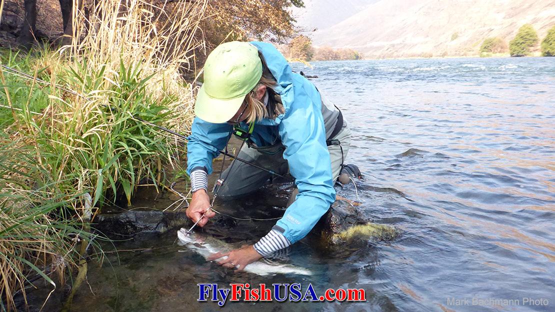 NRX Salmon/Steelhead Spey 1445/6-4G (12'-5/6 weight)