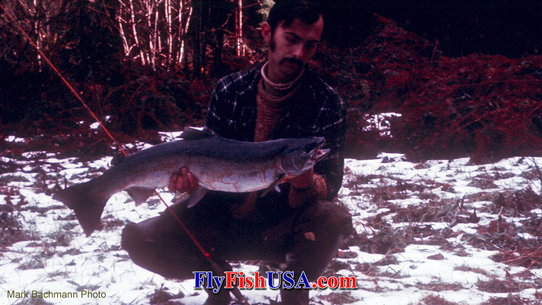 Mark Bachmann with a steelhead landed in 1971 from the Sandy River on a six fot five weight fly rod.