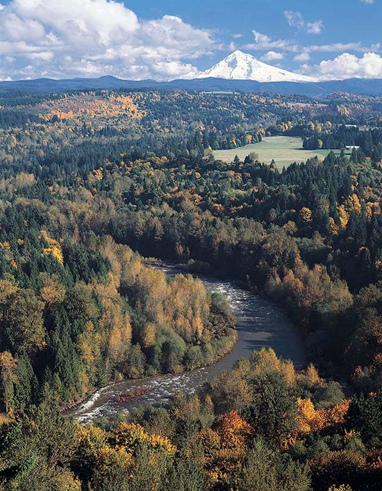 Picture of Sandy River Canyon with Mt. Hood in background. style=