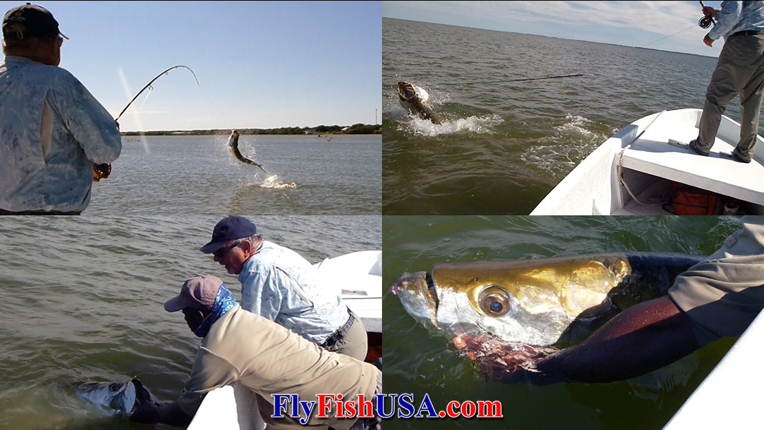 A collage of pictures of a fly angler battling and subduing a large tarpon.