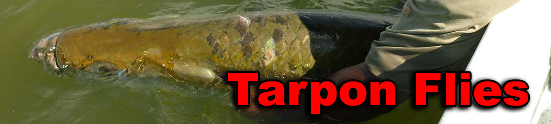Picture of large tarpon as a header for a sellection of tarpon flies.