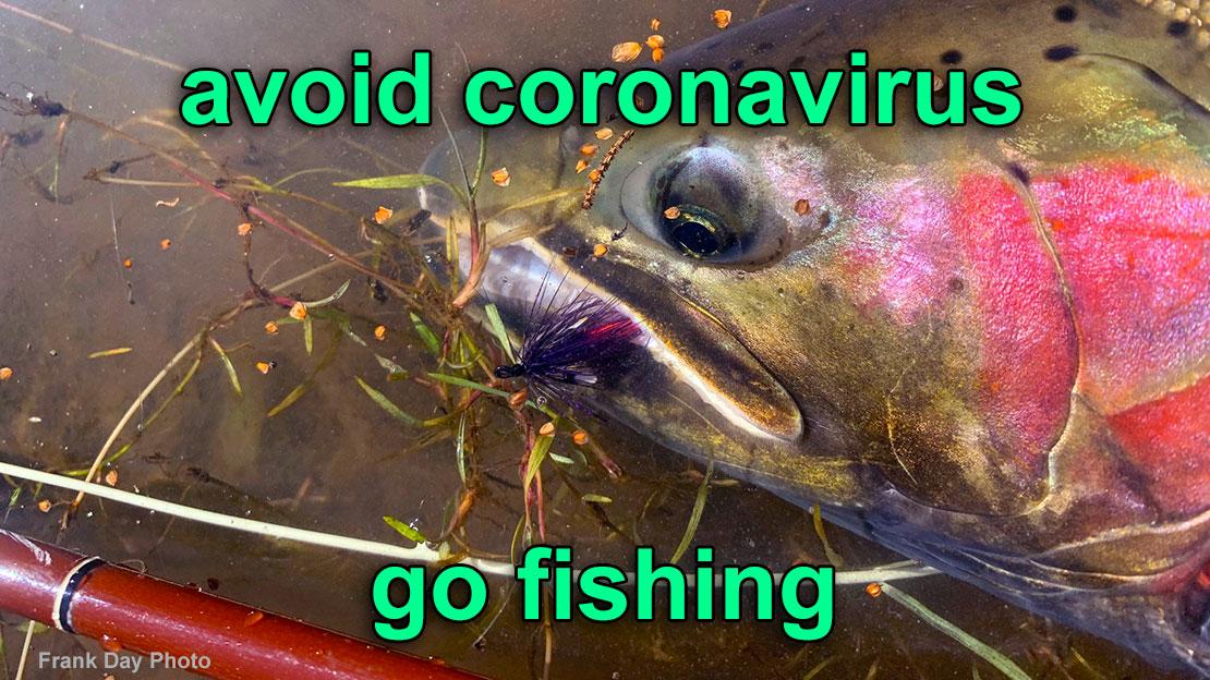 Avoid the coronavirus COVID-19 and go fly fishing
