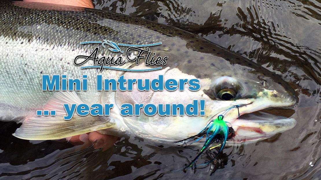Aqua Flies Mini Intruder