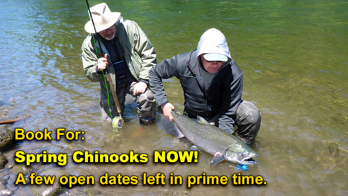 Fly Fishing For Spring Chinook