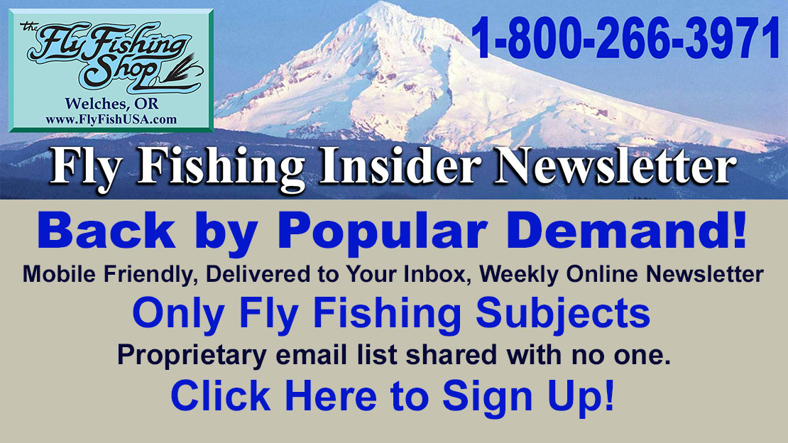 Join our weekly Insider Newsletter