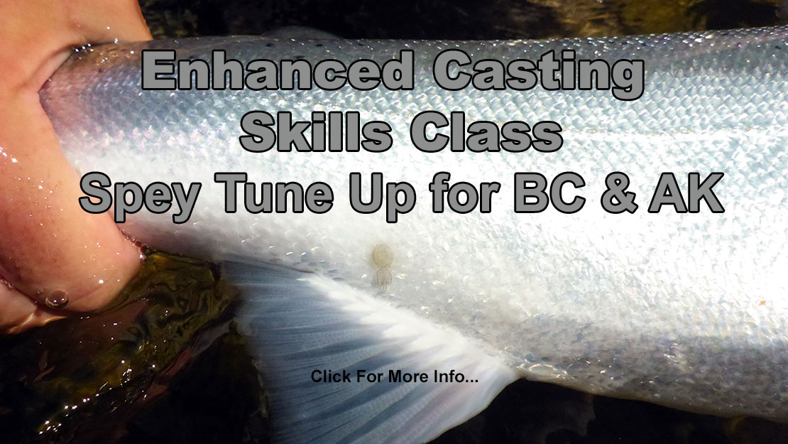 Enhanced Spey Casting Skills Class