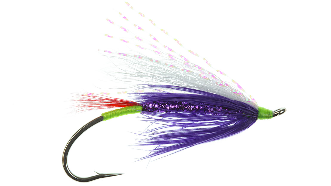 Low Water Green Butt Purple Summer Steelhead Fly, picture