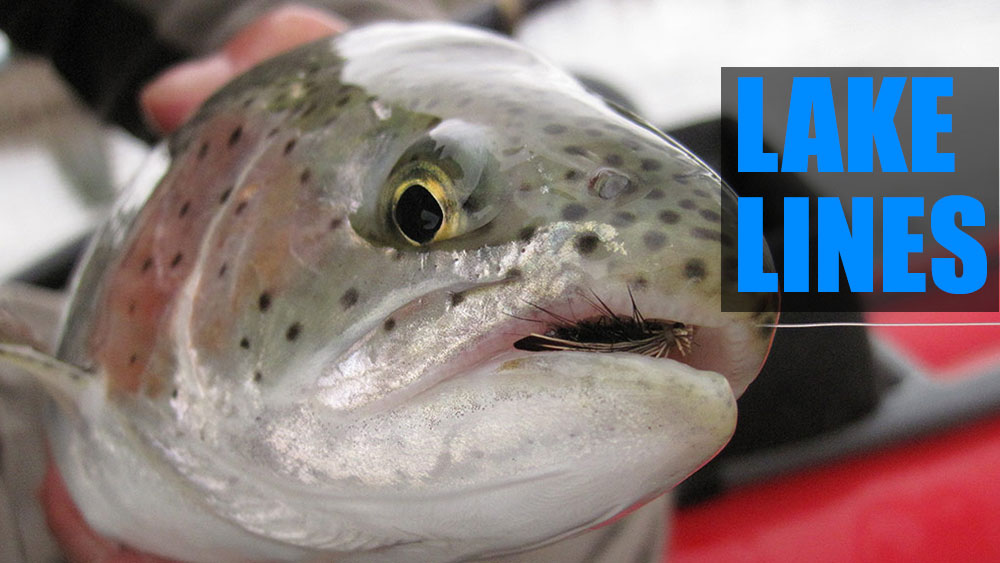 The best fly lines for lake fishing
